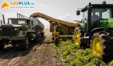 Khởi nghiệp nông nghiệp
